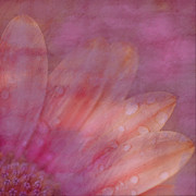 Remembering Spring Print by Bonnie Bruno