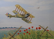 Biplane Paintings - Remembrance by Elaine Jones