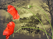 Floral Digital Art Posters - Remembrance Poster by Linda Lees