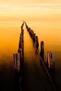 Lake Metal Prints - Remnants Metal Print by Chad Dutson