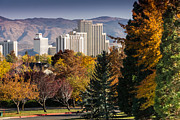 Janis Knight - Reno in Fall from Rancho...