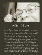 Homeless Pets Framed Prints - Rescue Love Adoption Framed Print by Andee Photography