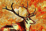 Prairie Digital Art - Resting Elk by Jack Zulli