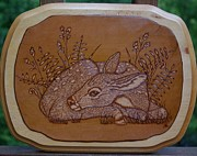 Leather Pyrography - Resting Fawn Pyrography Art by Shannon Snare