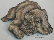 Pencil On Canvas Art - Resting by Lisa Marie Szkolnik