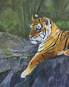 Cubs Painting Originals - Resting Place - Tiger Cub by Johanna Lerwick
