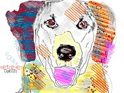 Golden Retriever Mixed Media - Retriever Graffiti by Brian Buckley