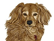 Retriever Mixed Media Posters - Retriever Mix Poster by Karen Sheltrown