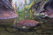 West Fork Oak Creek Canyon Posters - Revisited Poster by Peter Coskun