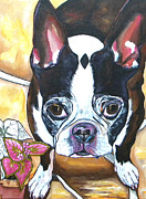 Commissions  Paintings - Rex by Patti Schermerhorn