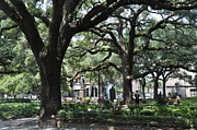 Reynolds Framed Prints - Reynolds Square in Savannah Framed Print by Kay Mathews