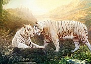 Bigcat Framed Prints - Rhana And Rhaja Framed Print by Angel Gold