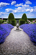 Garden Ornament Framed Prints - Rhapsody In Blue Framed Print by Meirion Matthias