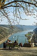 Rhine Valley Posters - Rhine Gorge from above Oberwesel Poster by David Davies