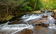 Meander Prints - Ricketts Glen Print by Robert Harmon