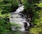 Mohican Posters - Ricketts Glens Cascading Mohican Falls on Kitchen Creek Poster by Gene Walls