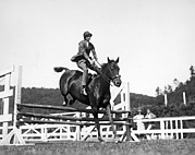 18-19 Years Prints - Rider Jumps At Horse Show Print by Underwood Archives