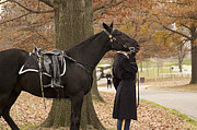 Funeral Photos - Riderless Horse by Terry Rowe