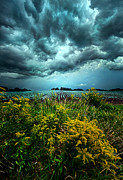 Phil Koch - Riders On The Storm