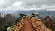 South Kaibab Trail Photos - Ridge by Charles Ables