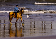 Horseriding Horse Riding Posters - Riding on the Beach Poster by Trevor Kersley