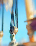 Ropes Originals - Rigging I by Marianne Campolongo