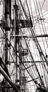 Sailing Ship Metal Prints - Rigging Metal Print by Olivier Le Queinec