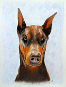 Pinscher Drawings Posters - Rio Poster by Kat DeLap