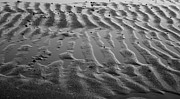Kathy DesJardins - Ripples in the Sands
