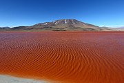 Bolivia - Ripples on Laguna Colorada by James Brunker