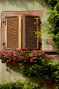 Flower Boxes Framed Prints - Riquewihr Window Framed Print by Brian Jannsen
