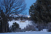 Harold Greer Metal Prints - Rising moon Metal Print by Harold Greer