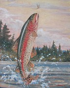 Robert Stump - Rising Trout