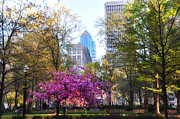 Philly Digital Art Metal Prints - Rittenhouse Square in Springtime Metal Print by Bill Cannon