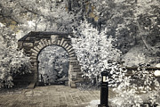 Mary Almond - Ritter Park Arch