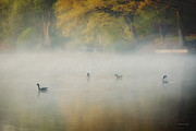 Geese Prints - River at Sunrise Print by Everet Regal