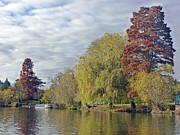 Stratford Art - River Avon in Autumn by Tony Murtagh