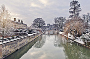 Swans... Prints - River Cam in Winter Print by Justin Paget