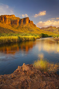Peter James Nature Photography Posters - River Days Poster by Peter Coskun