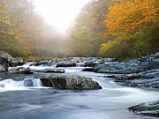 Gatlinburg Tennessee Prints - River in Tennessee Print by Nian Chen