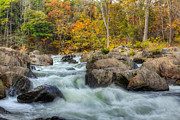 Autumn Landscapes Prints - River Rapids Print by Bill  Wakeley