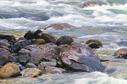 Water In Creek Posters - River Rocks Poster by Sharon Talson