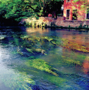 River Sile In Treviso Italy Print by Heiko Koehrer-Wagner