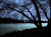 Evenings Photo Prints - River View Print by Claude Oesterreicher