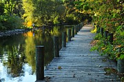 River Walk In Traverse City Michigan Print by Terri Gostola