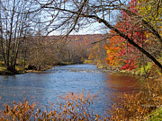 Fall River Scenes Posters - Rivers Edge Poster by Arlene Carmel