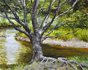 Tree Roots Paintings - Rivers Edge by Scott Harding