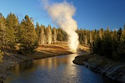 Yellowstone Photos Prints - Riverside Reflection Print by Adam Jewell