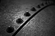 Depth Of Field Photos - Rivets 1 by Scott Norris