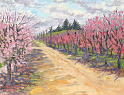 Peaches Originals - Road Through the Peach Orchards by Rhett Regina Owings